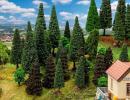 Для предзаказов!Новинка 2019!Модели 30-ти смешанных лесных деревьев отсортированных.Пр-во FALLER.Арт.181530.Масштабы НО-ТТ (1:87-1:120).