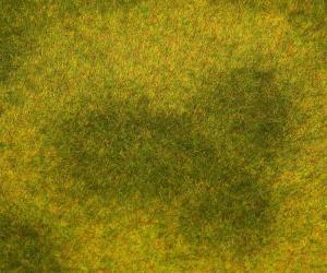 Модель сегмента ландшафта PREMIUM-трава высокая,светлая.Пр-во FALLER.Арт.180488.Масштаб НО (1:87).