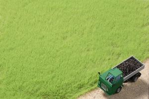 Модель волокон травы светло-зеленых высотой 4,5 мм.Пр-во Аухаген.Арт.75613.Масштаб НО (1:87).